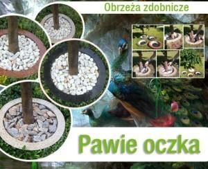 pawie_oczko