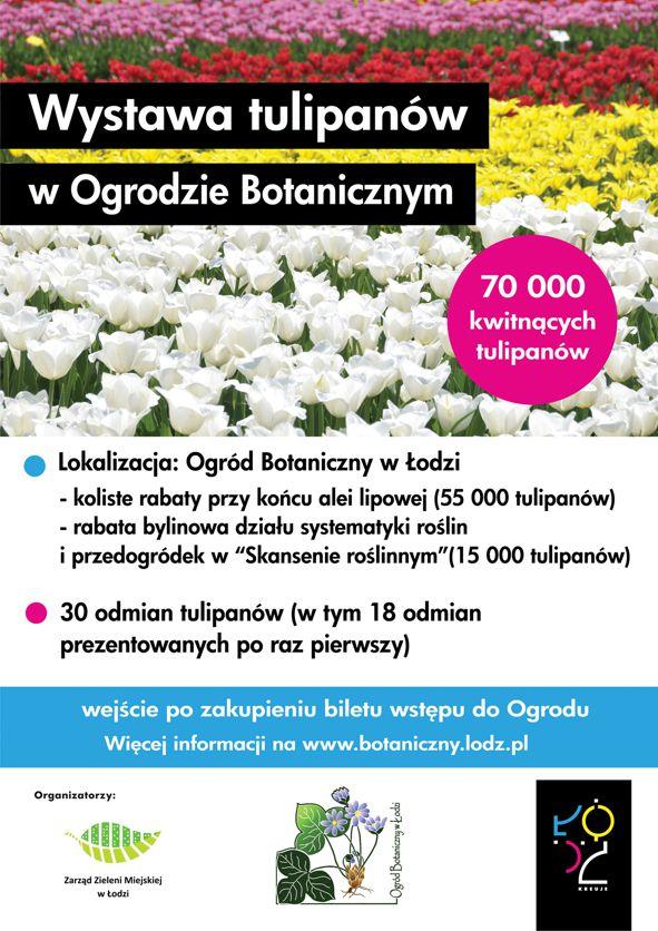 Tulipany plakat 2016 net