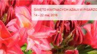 """ŚWIĘTO KWITNĄCYCH AZALII – """"Pudełek"""": 21-29.05.2016 – Pisarzowice Święto Kwitnących Azalii organizowane jest w szkółce w Pisarzowiach oraz w naszej filii w Iłowej. Oba Święta odbywają się w różnych terminach!! […]"""