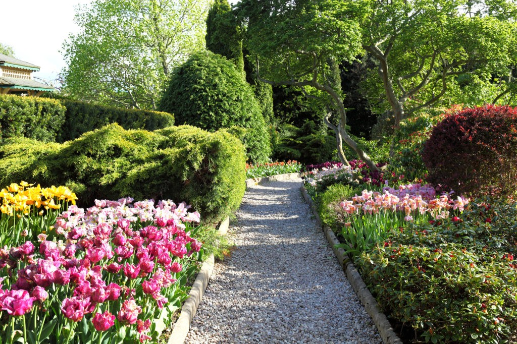 Cororful spring garden.