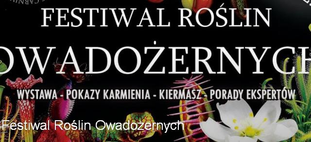 Mamy ogromną przyjemność zaprosić Państwa na największy w Europie Festiwal Roślin Owadożernych, który odbędzie się w Ogrodzie Botanicznym UMCS w Lublinie! Rozdajemy rosiczki za darmo! – akcja na FB www.facebook.com/events/278515079187220/ […]