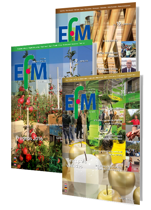 Prenumerata: EFM wersja angielska