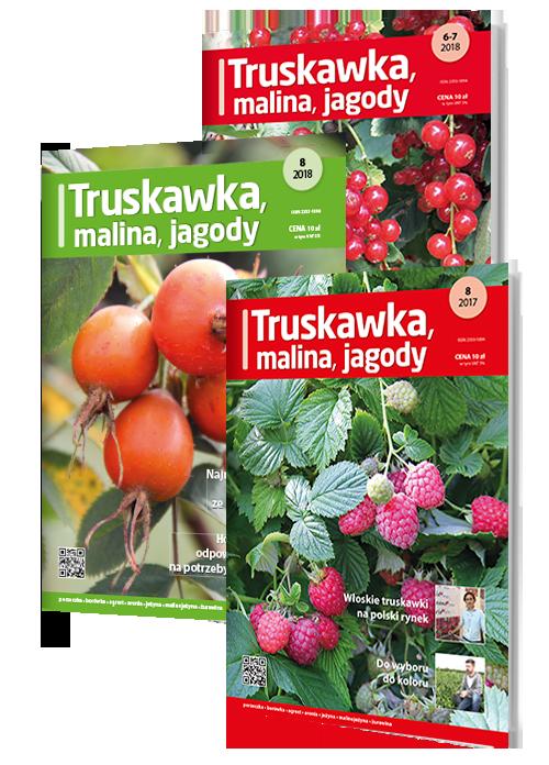Prenumerata: Truskawka, Malina, Jagody