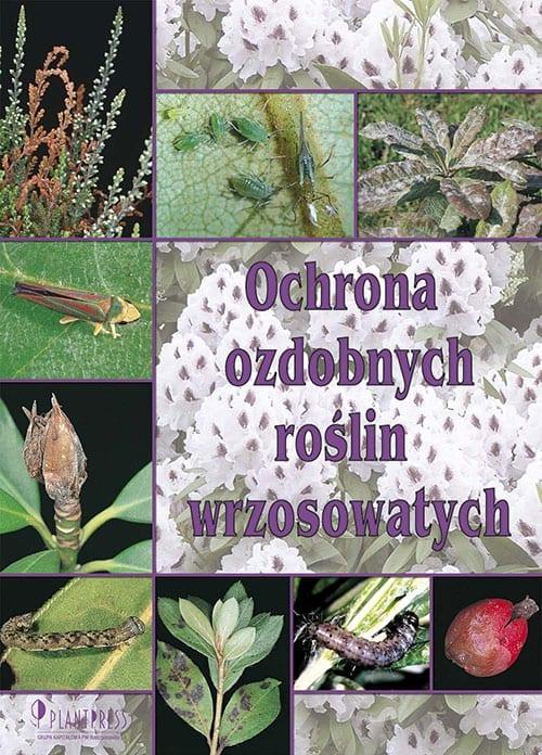 Ochrona roślin wrzosowatych