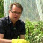 Rok w ogrodzie - 02.06.2012