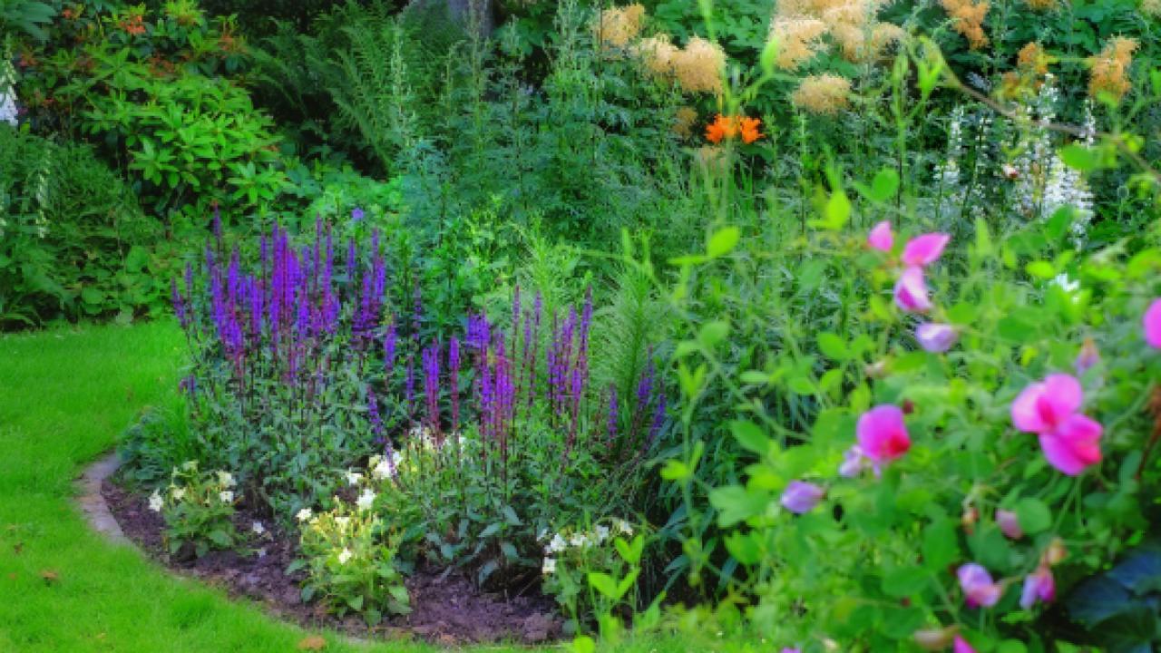 Rok w ogrodzie - 26.04.2014