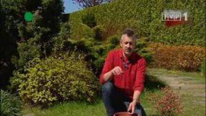 Rok w ogrodzie - Czas na warzywnik