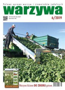 Warzywa 6/2019