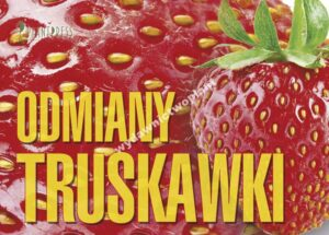 Odmiany truskawki