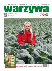 Warzywa 7/2020