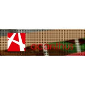 acanthus-studio-architektury-krajobrazu
