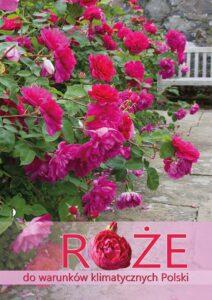 Róże do warunków klimatycznych Polski