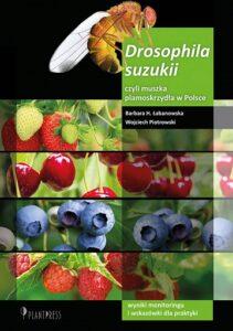 Drosophila suzukii, czyli muszka plamoskrzydła w Polsce