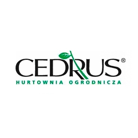 cedrus-hurtownia-ogrodnicza