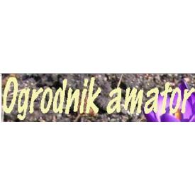 ogrodnik-amator-pl