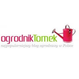 projekt-ziele-pracownia-ogrodnika-tomka
