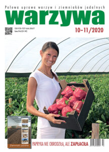 Warzywa 10-11/2020