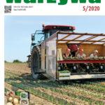 Warzywa 5/2020