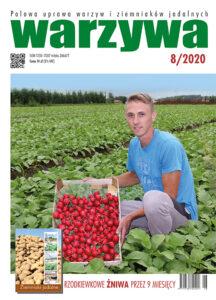 Warzywa 8/2020