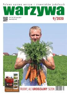 Warzywa 9/2020