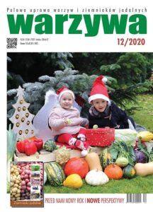 Warzywa 12/2020